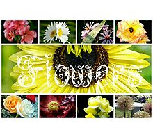 Fancy Flowers Collage Photographic Print