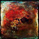Nebula•3 by Robert Meyer
