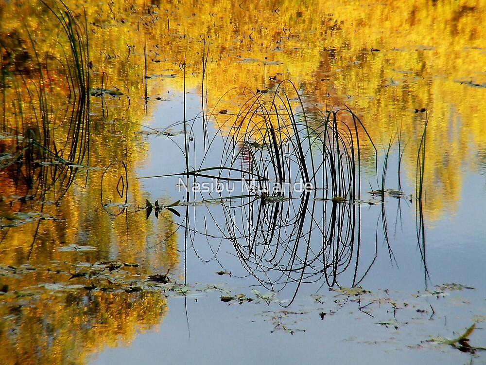 Time to Reflect by Nasibu Mwande