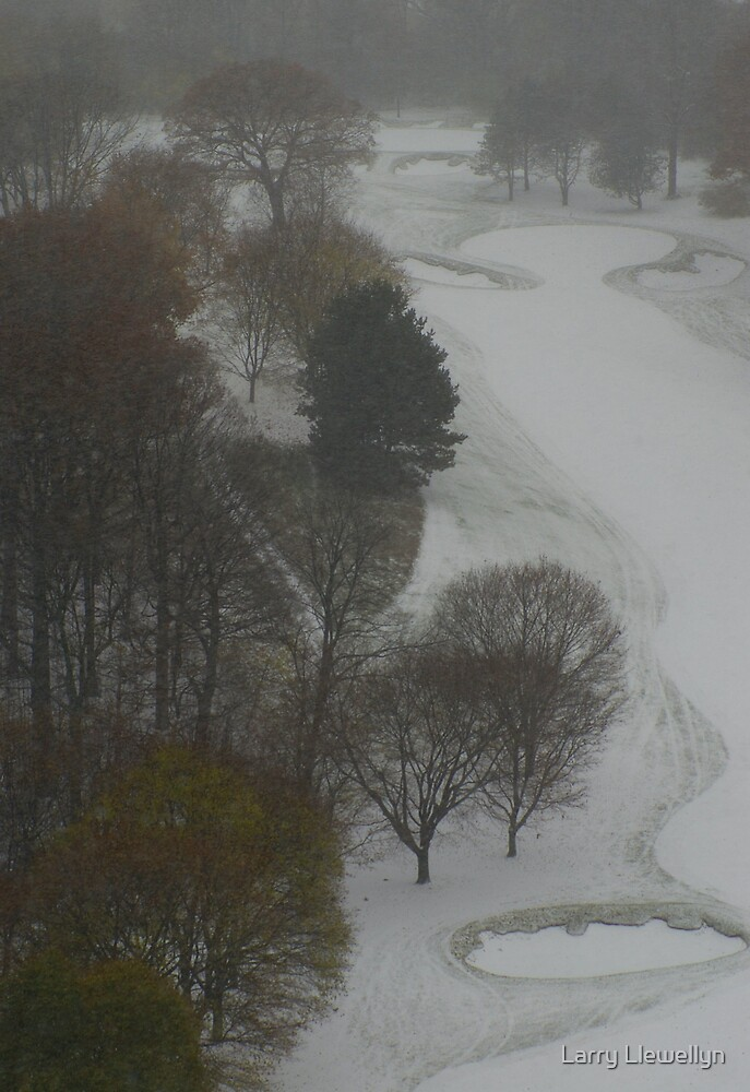 During a Storm: No Golfing Today by Larry Llewellyn