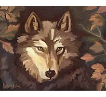Lonely Wolf Photographic Print