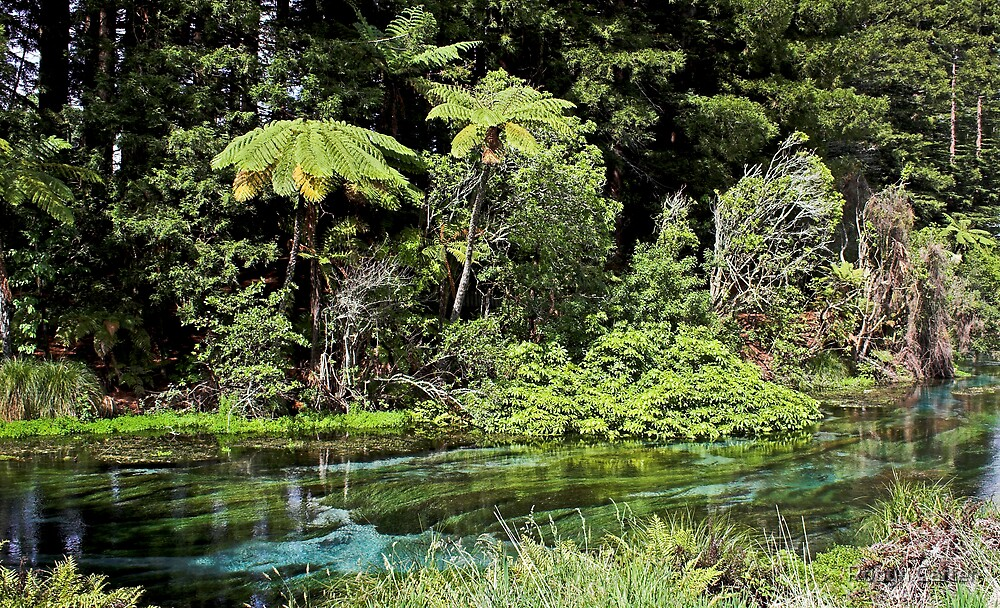 Hemurana Springs by Robyn Carter