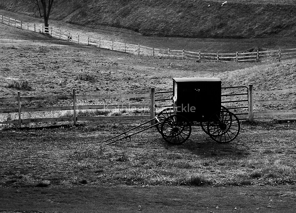 Amish Buggy by Kathleen Struckle