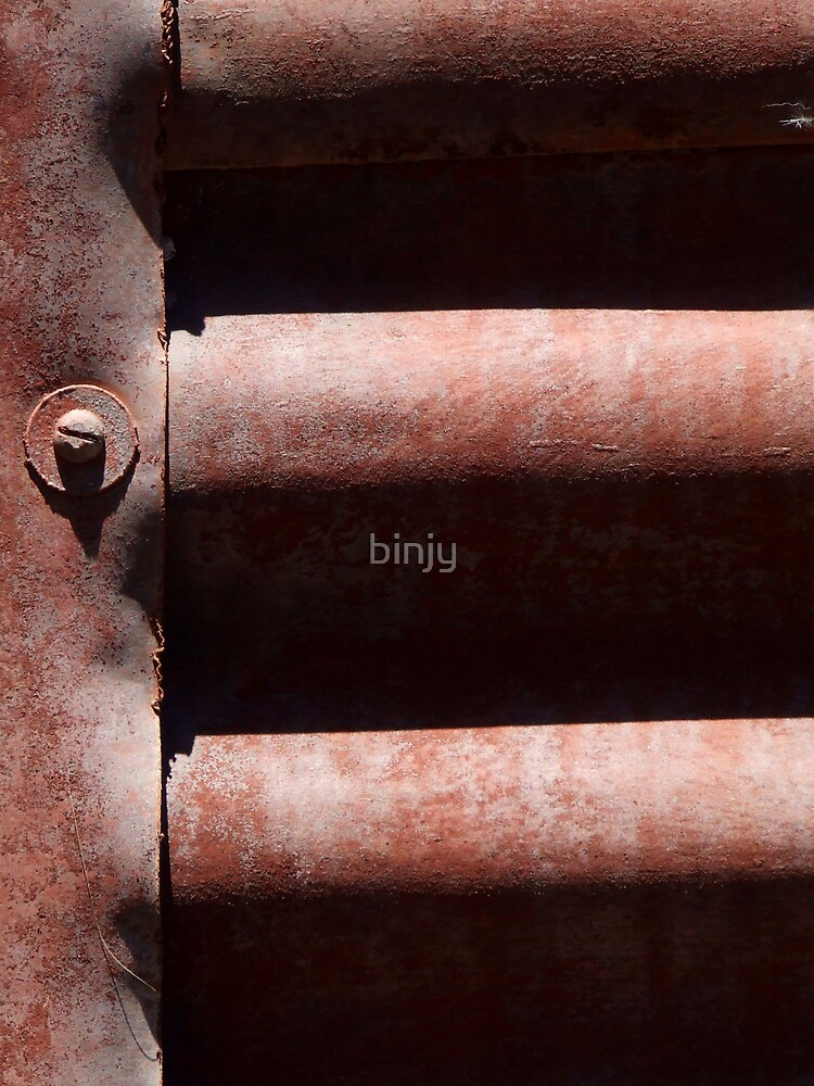 Corrugated Red Shed by binjy