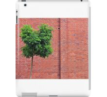 Red Bricks on a wall iPad Case/Skin