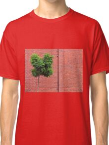 Red Bricks on a wall Classic T-Shirt