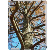 Up A Bare Tree iPad Case/Skin