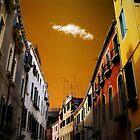 Ciel'oro di Venezia  by Daniel  Rarela