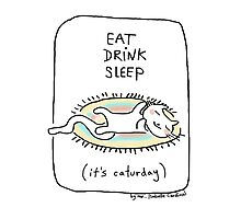 Eat drink sleep / Cat doodle Photographic Print