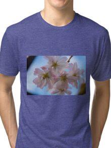 Flower close-up 3 Tri-blend T-Shirt