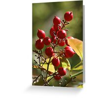 Berry Ripe Greeting Card