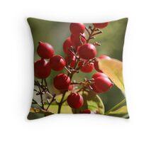 Berry Ripe Throw Pillow