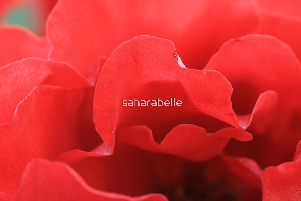 Lip Talk by saharabelle