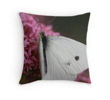 Moth Eaten Throw Pillow