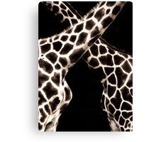 Cross Patterns Canvas Print