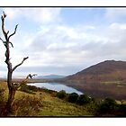 County Mayo December 2006 by Philip  Rogan