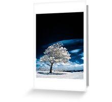 Beneath A Black Sky Greeting Card
