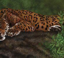 Lazy Leopard by Charlie Davis
