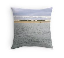 Broadwater with Pelican Throw Pillow