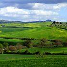 Tuscany landscapes by annalisa bianchetti