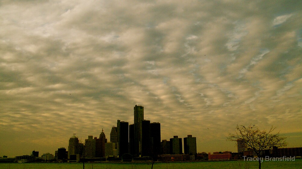 Detroit Skyline by Tracey Bransfield