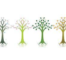 Four Seasons by Stacy Smith