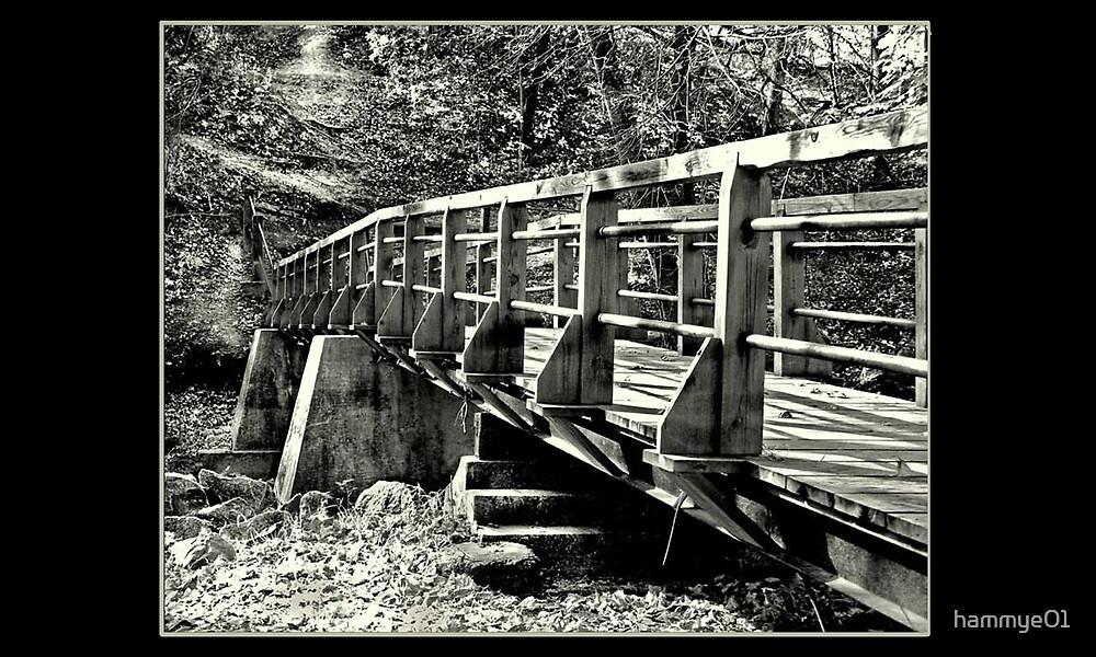 B&W Bridge by hammye01