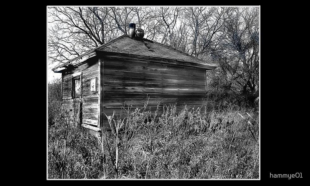 Little Shack in the Field by hammye01