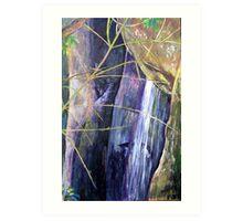 Falls at St Bernards Mt.Tamborine Art Print
