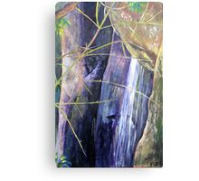 Falls at St Bernards Mt.Tamborine Metal Print