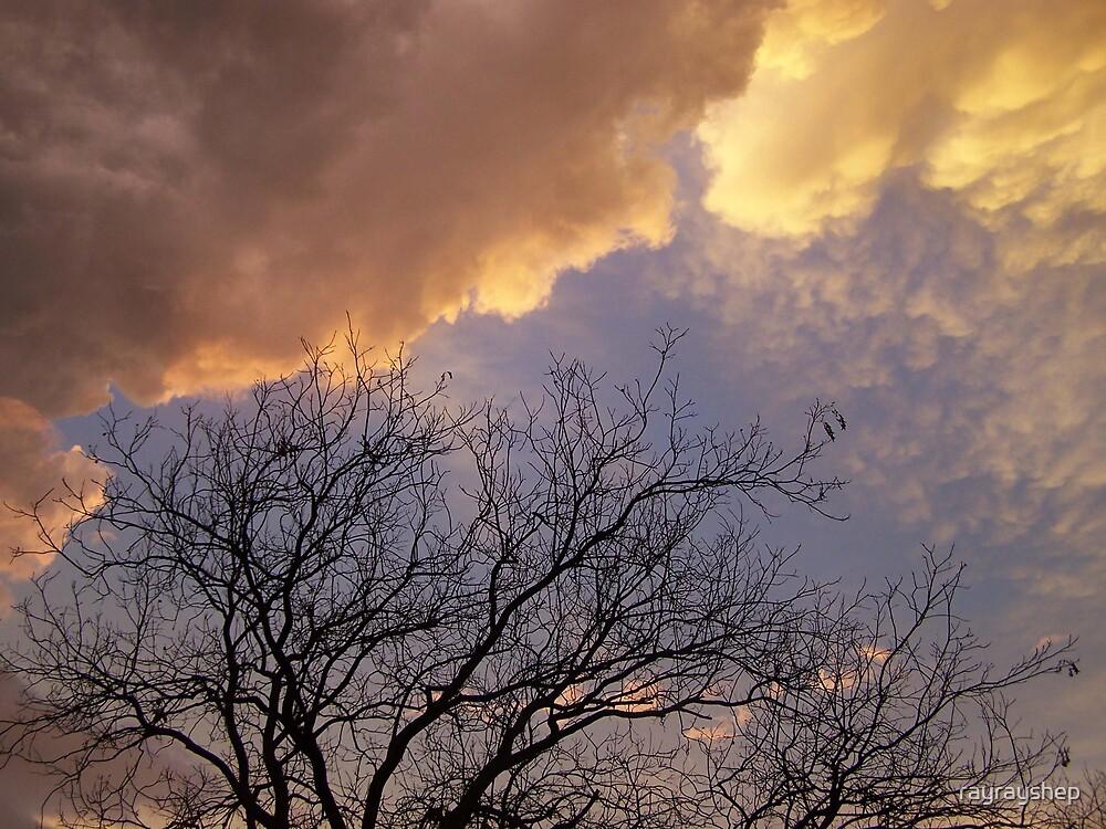 Stormy Night by rayrayshep
