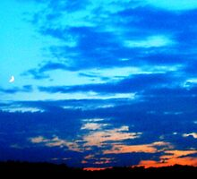 WEST TEXAS SUNSET by RENAY