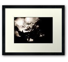 Flower With Character Framed Print
