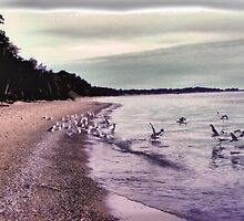 A Barefoot Walk Down The Beach In The 50's Special HDR by velveteagle