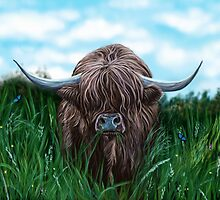 Scottish Highland Cow by brodyquixote