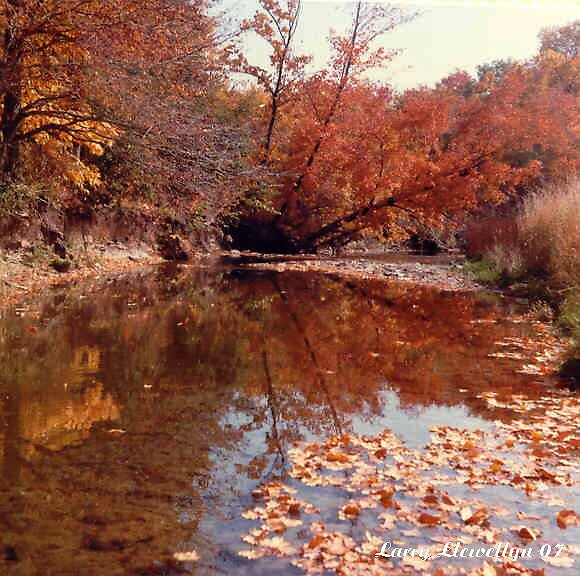 Hockley Valley in Fall by Larry Llewellyn