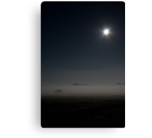 New Forest by Moonlight Canvas Print