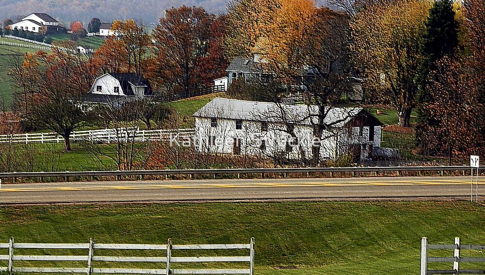 Ohio Farm by Kathleen Struckle