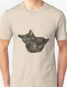 Two Kittens T-Shirt