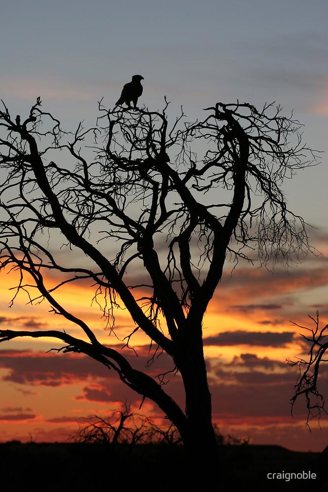 Mulga Sunset by craignoble