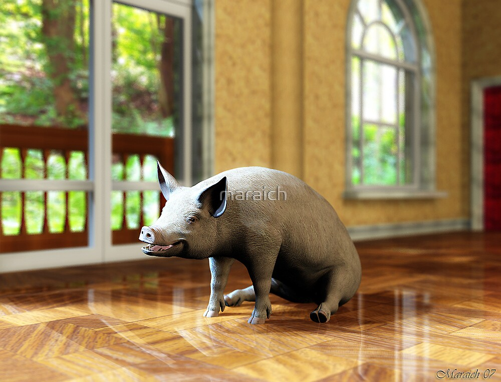 A Room with a Pig by maraich