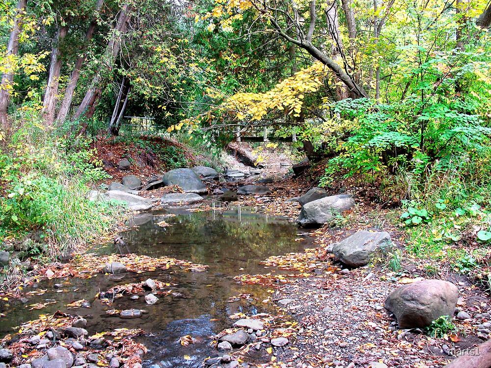 Harmony Creek by marts1