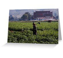 Rural Temple Greeting Card