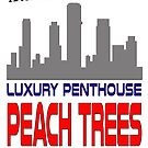 Peach Trees Apartment by Jonnyfez