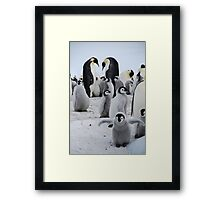 I want to fly! Framed Print