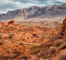 Valley of Fire View by Jerry Deutsch