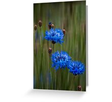 Old-fashioned blues Greeting Card