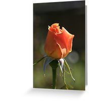 A Rose For Mum Greeting Card