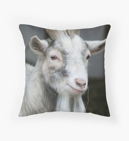 Toffee Throw Pillow