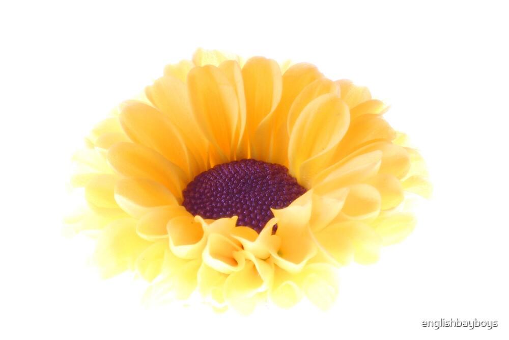 Yellow by englishbayboys